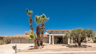 Lake Havasu City Single Family Home For Sale: 2501 Lema Dr