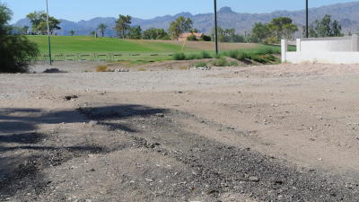 Lake Havasu City AZ Residential Lots & Land For Sale: $175,000