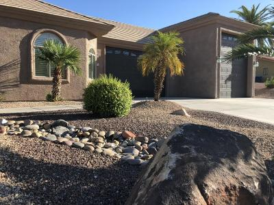 Lake Havasu City AZ Single Family Home For Sale: $769,900