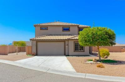 Lake Havasu City Single Family Home For Sale: 1810 E Chestnut Blvd