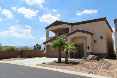Lake Havasu City Single Family Home For Sale: 700 Malibu Dr