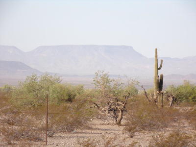 La Paz County Residential Lots & Land For Sale: 37600 Highway 72
