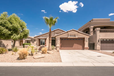 Lake Havasu City Single Family Home For Sale: 725 Malibu Dr