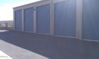 Lake Havasu City Commercial For Sale: 1585 Dover Ave #56