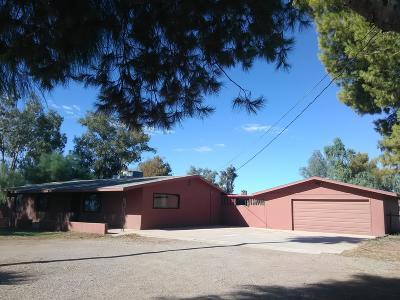 Single Family Home For Sale: 8485 S Boundary Peak Rd