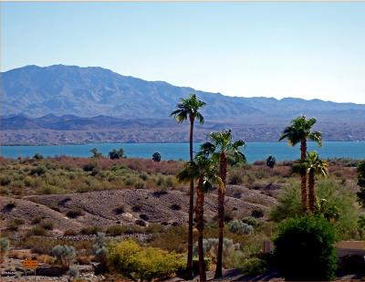 Lake Havasu City Residential Lots & Land For Sale: 1314 Longshore Ln