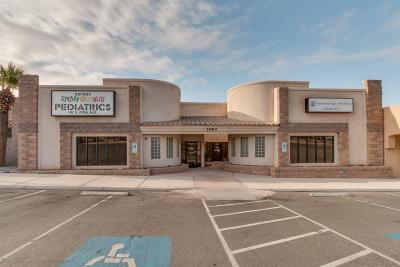 Lake Havasu City Commercial For Sale: 1980 Mesquite Ave