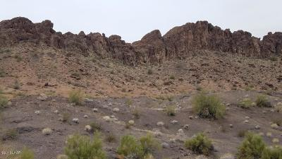 Lake Havasu City Residential Lots & Land For Sale: 20 Acres Sara Park