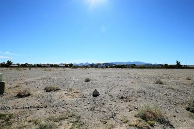 Lake Havasu City Residential Lots & Land For Sale: 907 Bella Vista Dr