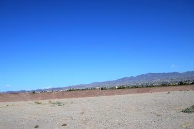 Lake Havasu City Residential Lots & Land For Sale: 914 Bella Vista Dr