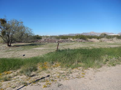 Salome Residential Lots & Land For Sale: 38986 Harquahala Rd