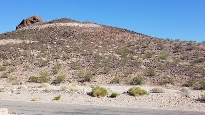 Lake Havasu City Residential Lots & Land For Sale: 230 Pacific Pl