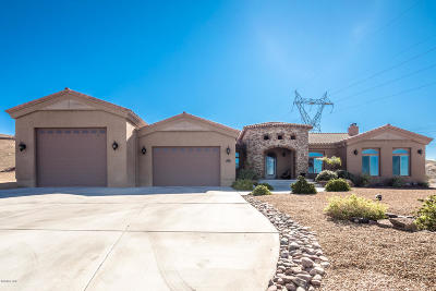 Lake Havasu City Single Family Home For Sale: 3100 Crater Dr