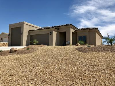 Lake Havasu City Single Family Home For Sale: 1672 Willow Ave