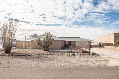 Lake Havasu City Single Family Home For Sale: 3329 Suzie Ln
