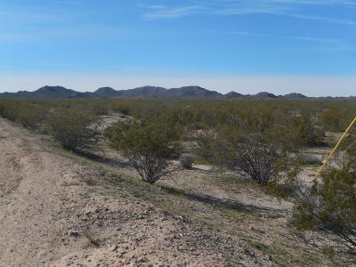 Salome Residential Lots & Land For Sale: 66126 65th St