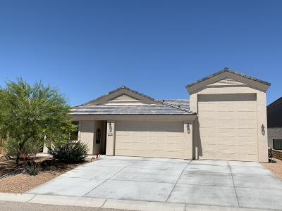 Lake Havasu City Single Family Home For Sale: 1749 E Azalea Ave