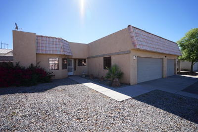 Single Family Home For Sale: 8733 Hopi Dr