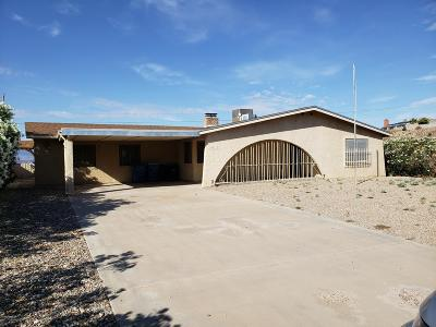 Lake Havasu City Single Family Home For Sale: 3767 Kicking Horse Dr