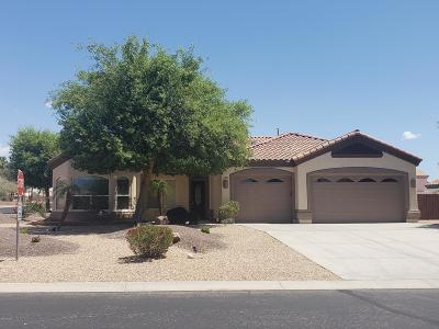Lake Havasu City Single Family Home For Sale: 3882 Surrey Hills Ln