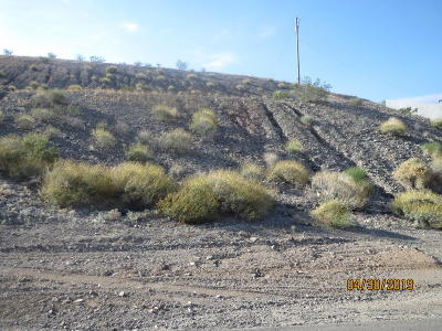 Lake Havasu City Residential Lots & Land For Sale: 4160 Peruvian Dr