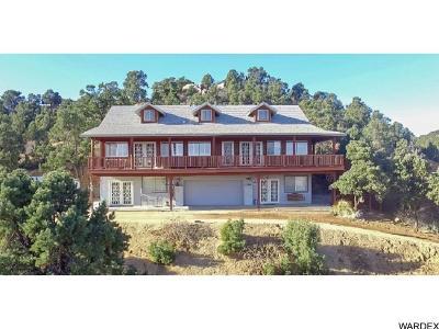Kingman Single Family Home For Sale: 2583 S Thunderhead Dr