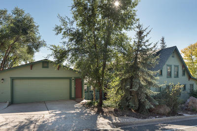 Coconino County Single Family Home For Sale: 224 N Elden Street