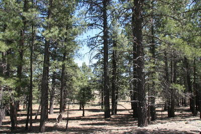Residential Lots & Land For Sale: 3t Coconino Forest Road