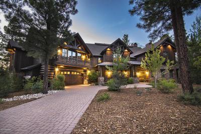 Flagstaff Single Family Home For Sale: 1990 E Iron Horse Court