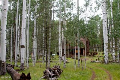 Flagstaff Single Family Home For Sale: Hart Prairie Rd. Road