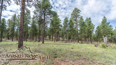 Residential Lots & Land For Sale: 2057 N Cobblestone Circle