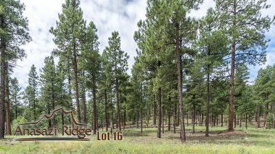 Residential Lots & Land For Sale: 2097 N Cobblestone Circle