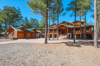 Flagstaff Single Family Home For Sale: 3254 Andrew Douglass