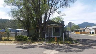Williams Single Family Home For Sale: 626 E Edison Avenue