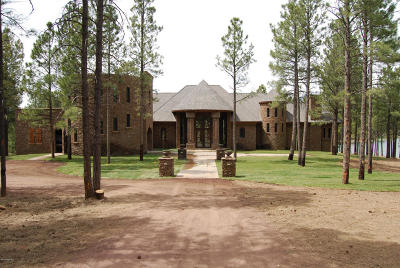Flagstaff Single Family Home For Sale: 401 N Sky View Street