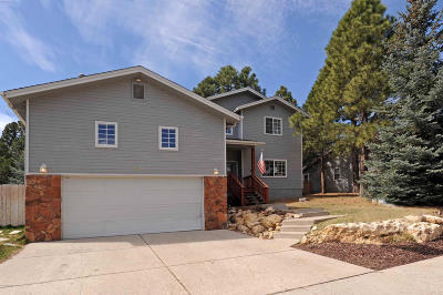 Coconino County Single Family Home For Sale: 6217 E Abineau Canyon Drive