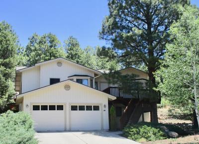 Flagstaff Single Family Home For Sale: 2600 N Rio De Flag Drive