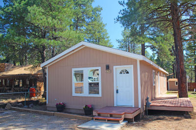 Coconino County Single Family Home For Sale: 376 Kiowa