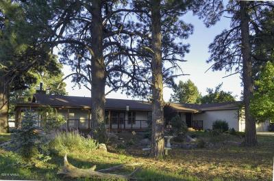 Coconino County Single Family Home For Sale: 6070 E Swede Drive