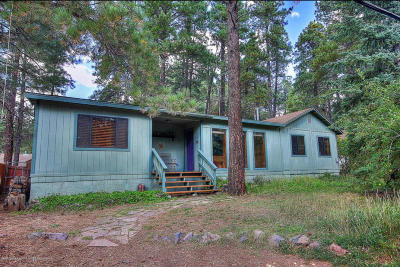 Flagstaff Single Family Home For Sale: 3070 White Cone Trail