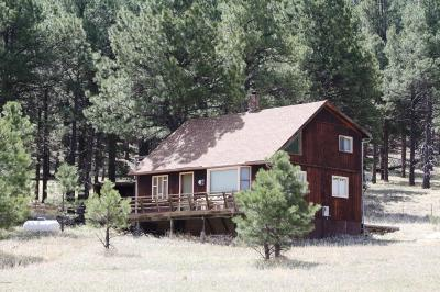 Flagstaff Single Family Home Pending - Take Backup: 6515 N Hawk Hill Road