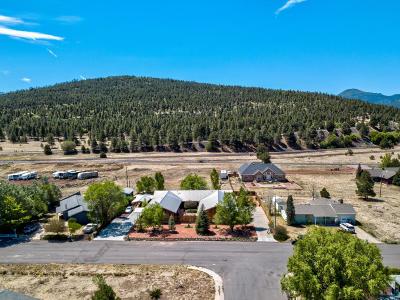 Williams AZ Single Family Home For Sale: $1,100,000