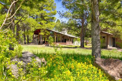 Flagstaff Single Family Home For Sale: 3002 Bear Howard