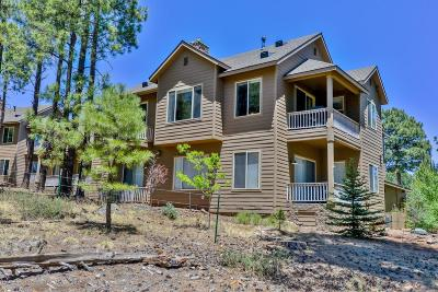 Coconino County Condo/Townhouse For Sale: 3879 S Brush Arbor