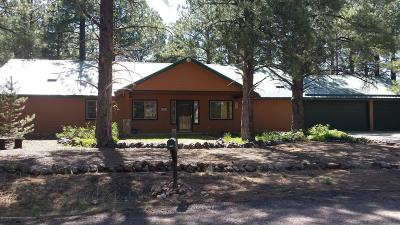 Flagstaff Single Family Home For Sale: 5490 S Cassandra Boulevard