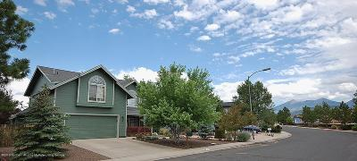 Flagstaff Single Family Home For Sale: 727 N Locust Drive