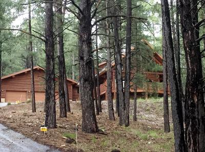 Flagstaff Single Family Home For Sale: 1373 Buckhorn Loop