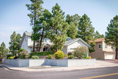 Flagstaff Single Family Home For Sale: 522 W Cattle Drive Trail