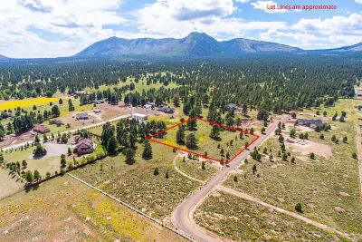 Residential Lots & Land For Sale: 5770 Provided Way