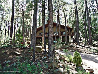 Coconino County Single Family Home For Sale: 255 E Navajo Road